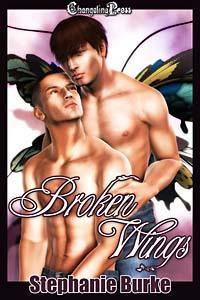 Broken Wings (Angel Falls 1) by Stephanie Burke